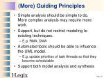 more guiding principles