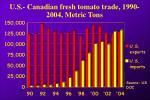 u s canadian fresh tomato trade 1990 2004 metric tons
