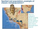 spotted owl population example of classic metapopulation