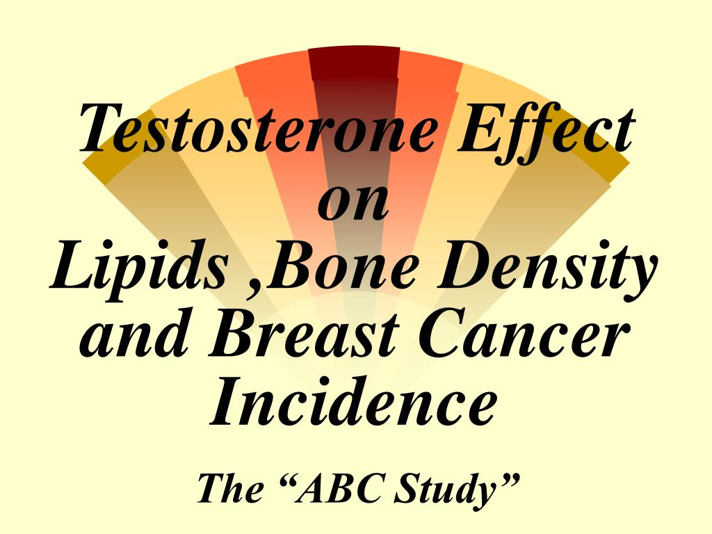 testosterone effect on lipids bone density and breast cancer incidence l.