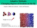 adaptive methods changing degrees of freedom on the fly
