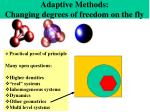 adaptive methods changing degrees of freedom on the fly56