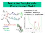 interaction energies in the coarse grained model