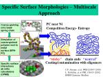 specific surface morphologies multiscale approach