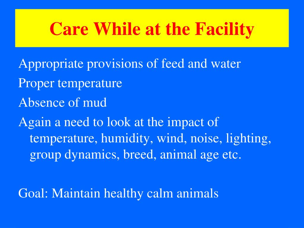 Care While at the Facility