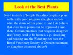 look at the best plants