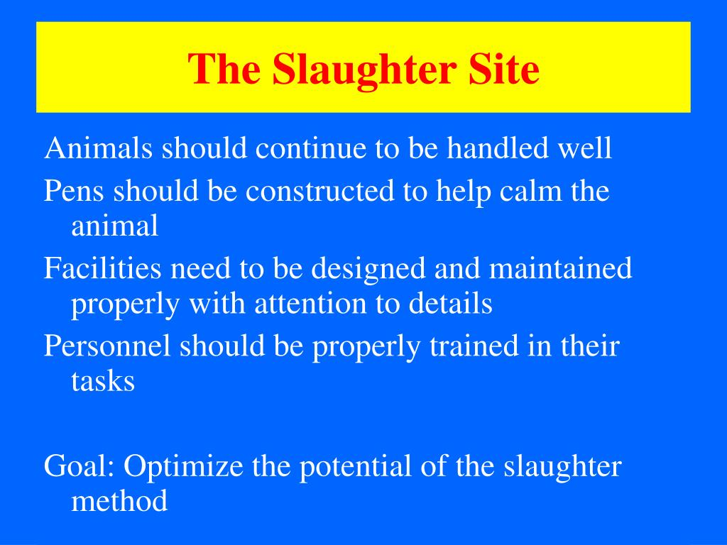 The Slaughter Site