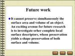 future work60