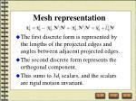 mesh representation