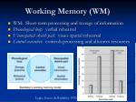 working memory wm