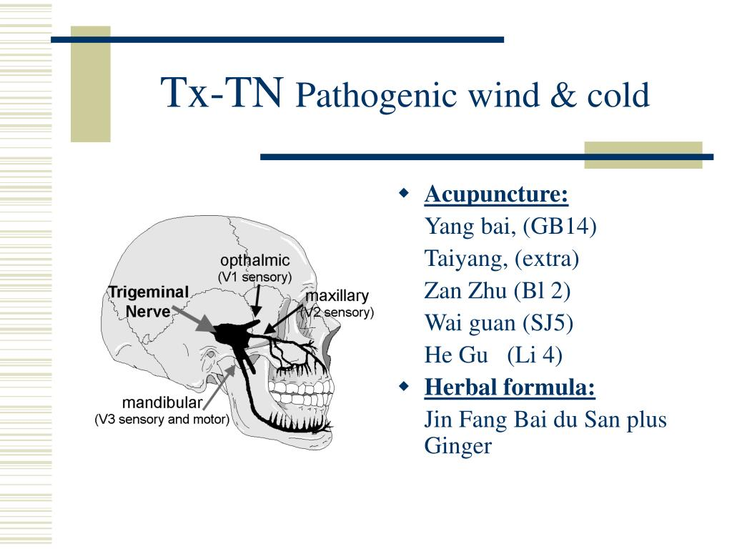 PPT - Pain Management by Acupuncture PowerPoint Presentation - ID:711395