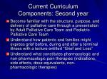 current curriculum components second year