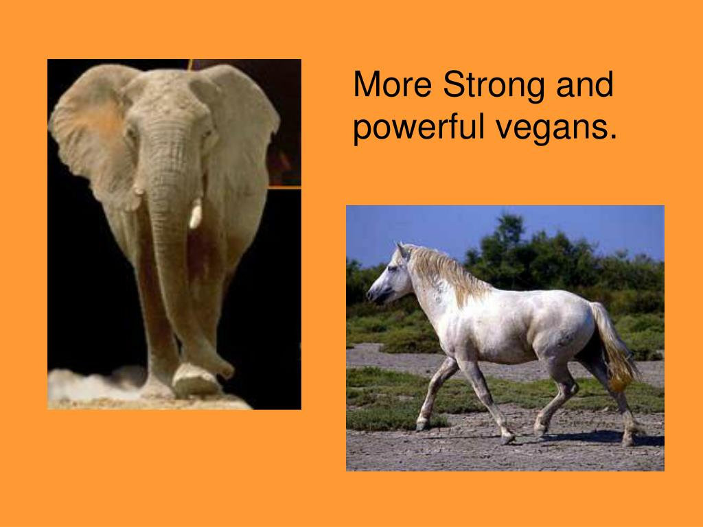 More Strong and powerful vegans.