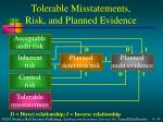 tolerable misstatements risk and planned evidence
