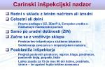 carinski in pekcijski nadzor29