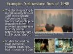 example yellowstone fires of 1988