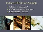 indirect effects on animals