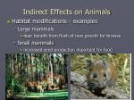 indirect effects on animals3