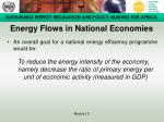 energy flows in national economies