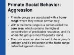 primate social behavior aggression45