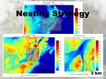 nesting strategy