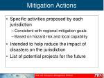 mitigation actions