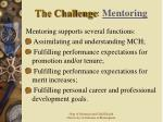 the challenge mentoring