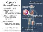 copper in human disease