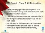 sms project phase 2 3 deliverables