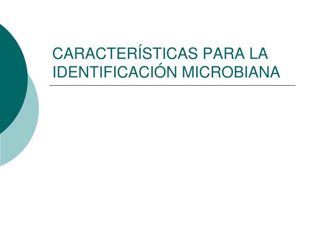 caracter sticas para la identificaci n microbiana l.