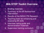 mia step toolkit overview15