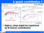 b quark contribution