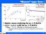 meson type flow