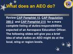 what does an aeo do