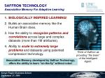 saffron technology associative memory for adaptive learning