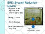 brd bycatch reduction device