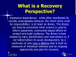 what is a recovery perspective