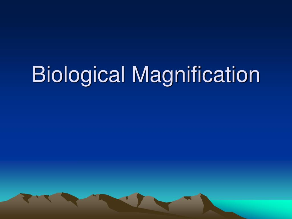 biological magnification l.