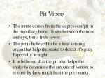 pit vipers19