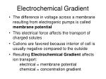 electrochemical gradient