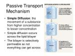 passive transport mechanism