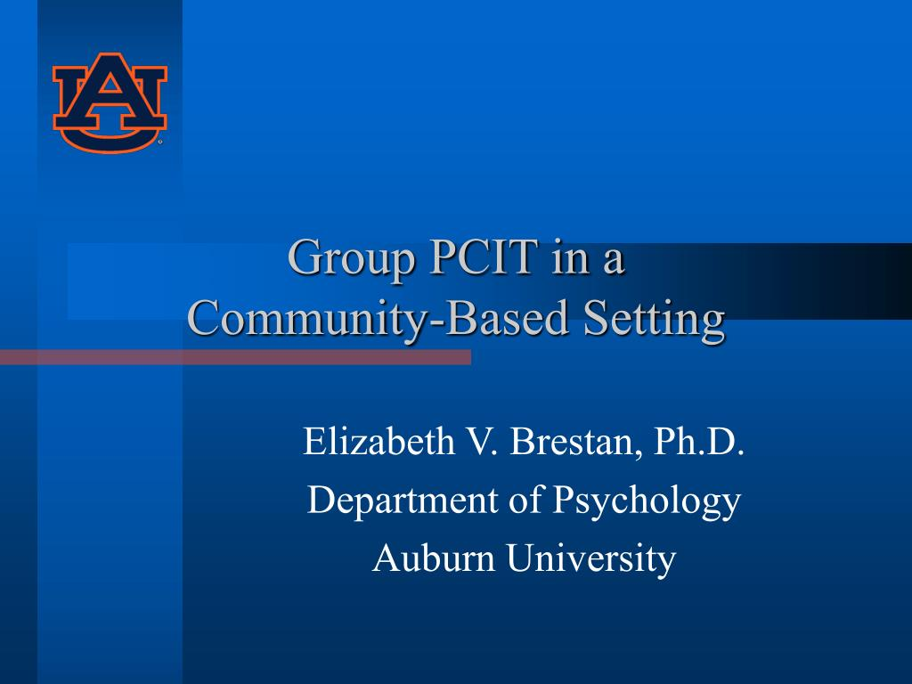 group pcit in a community based setting l.