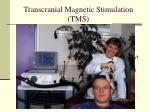 transcranial magnetic stimulation tms4