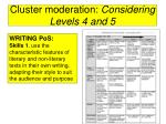 cluster moderation considering levels 4 and 540
