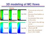 3d modeling of mc flows10