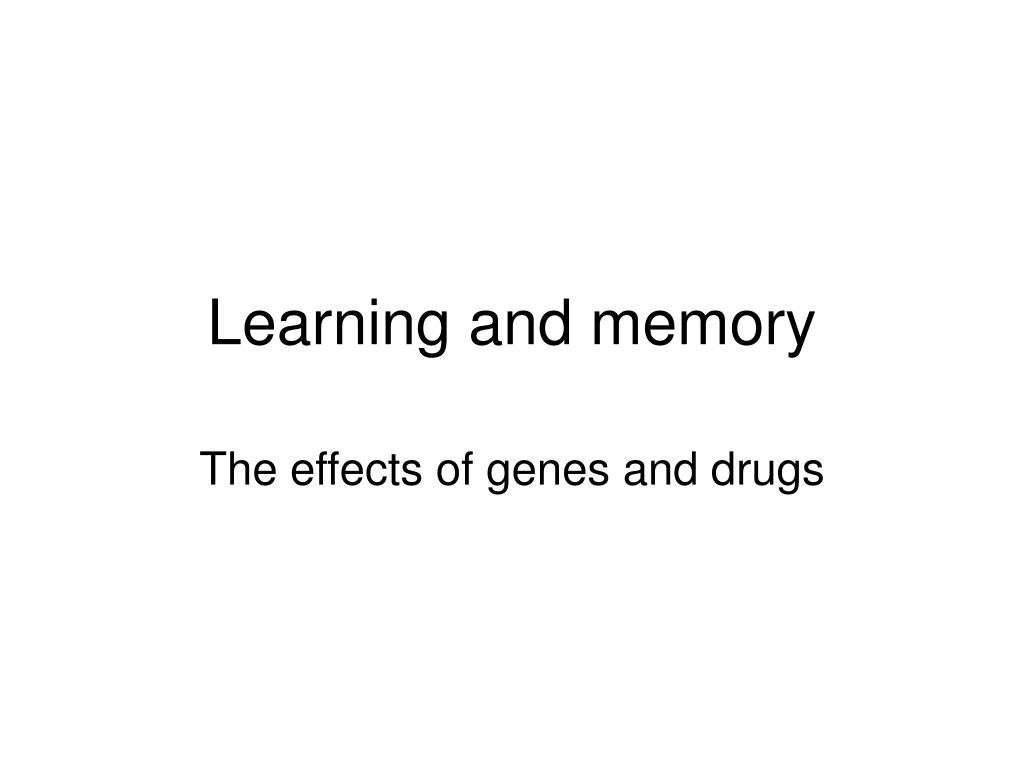 learning and memory l.