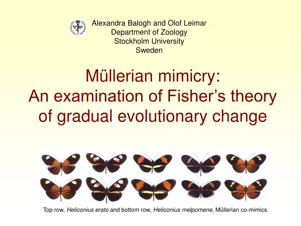 m llerian mimicry an examination of fisher s theory of gradual evolutionary change l.