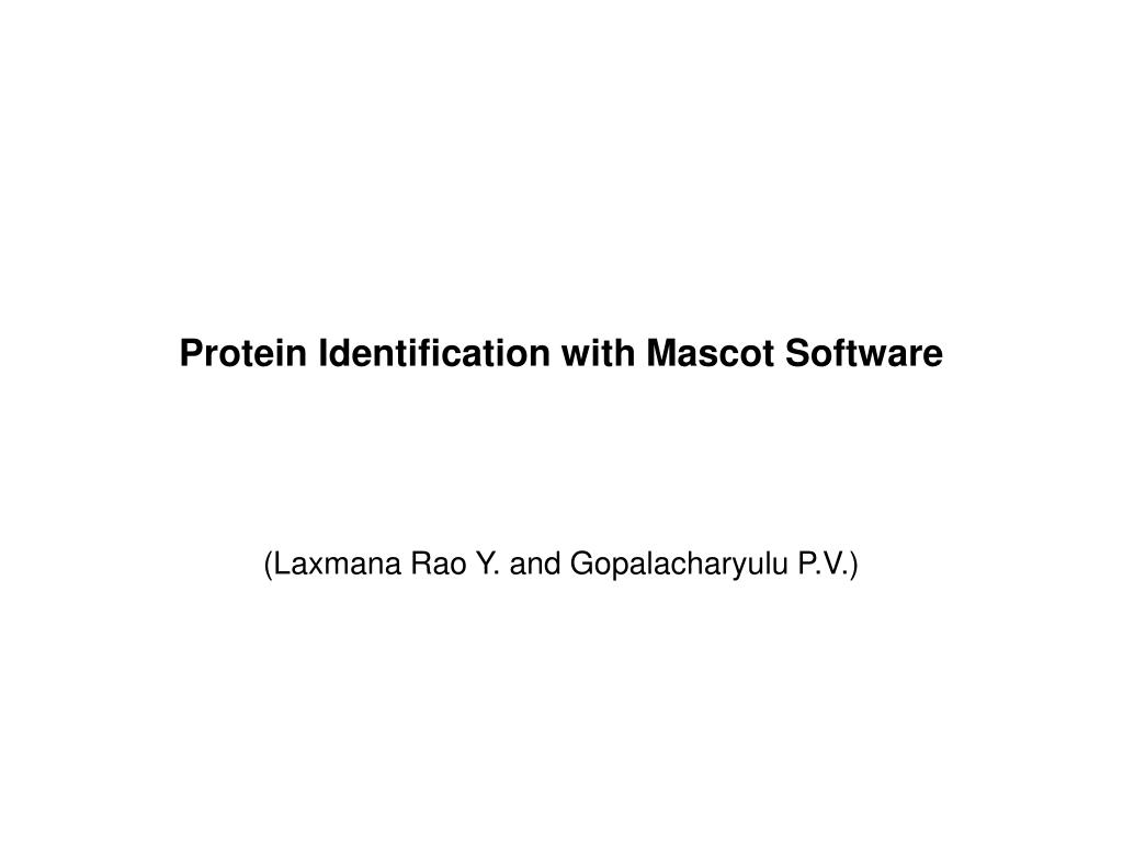 protein identification with mascot software l.