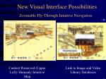 zoomable fly through intuitive navigation