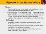 networks in the horn of africa